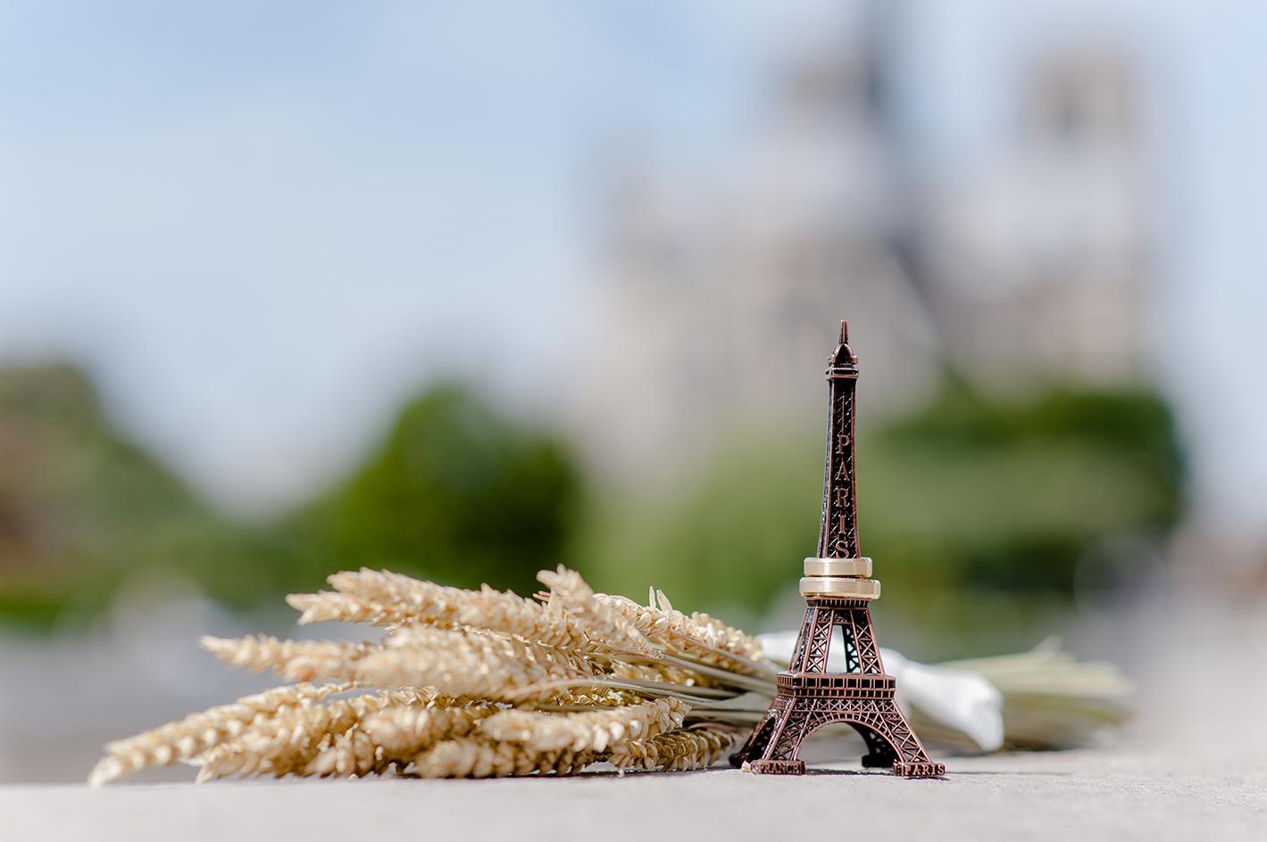 sessao fotografica de casamento em paris