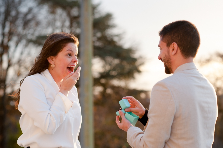 fotos de pedido de casamento em paris